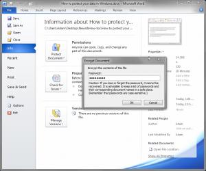 ProtectDataWindows1