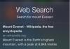 Siri Bing Search
