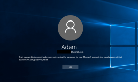 Windows 10 Wrong Password