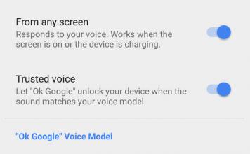 OK Google Detection Settings