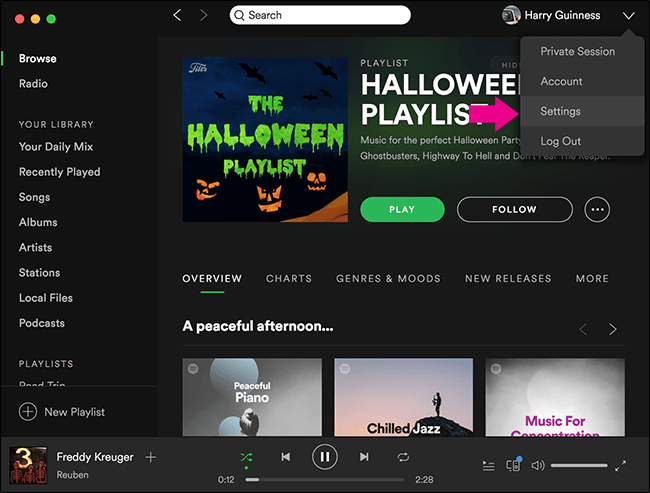 stop Spotify from playing all songs at the same volume