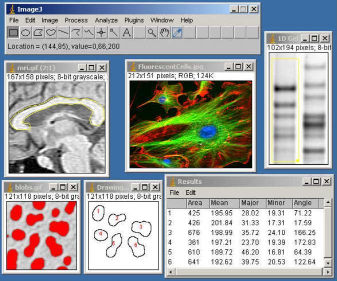 Download ij150-win-jre6-32-bit zip free - ImageJ