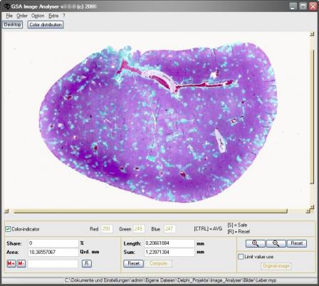 GSA Image Analyser Screenshot