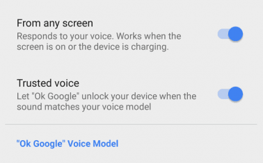 OK Google Detection Settings